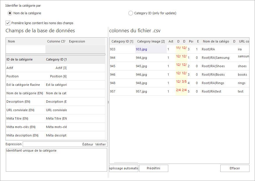 Attribuer les Colonnes du Fichier csv aux Champs de la Base de Données pour Importer les Catégories PrestaShop